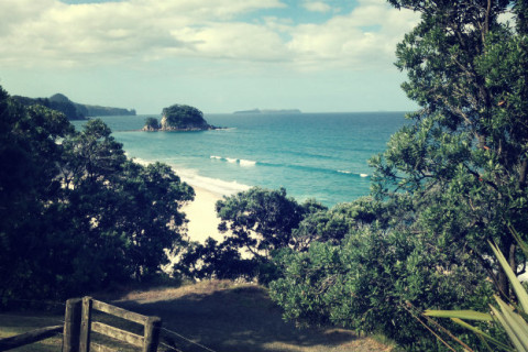 An image of Onemana beach in the coromandel