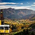 Arrowtown valley with new zealand food