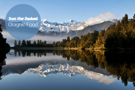 Lake matheson in the south island of new zealand