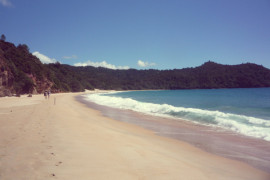 One of New Zealand's top beaches - New Chums in Coromandel